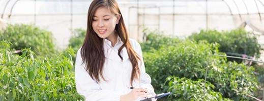 MSc International Agribusiness